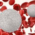 Bệnh máu trắng và những dấu hiệu nhận biết