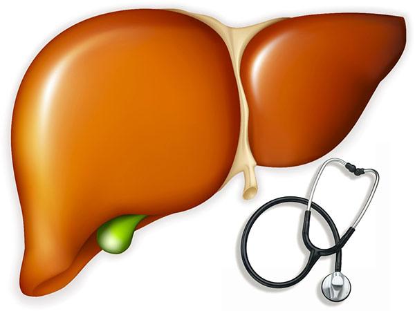 Tổng hợp những loại thuốc bổ gan tốt nhất hiện nay