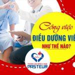 Tại Việt Nam có những chuyên ngành Điều dưỡng nào?